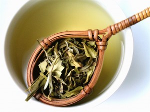 White Tea dalam Cinch Energy Tea Mix