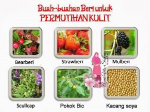 SET PENJAGAAN KULIT NUTRIWHITE