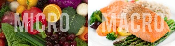 Apa itu makronutrient, Apa itu mikronutrient