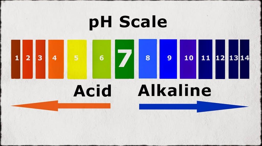 pH untuk badan kita