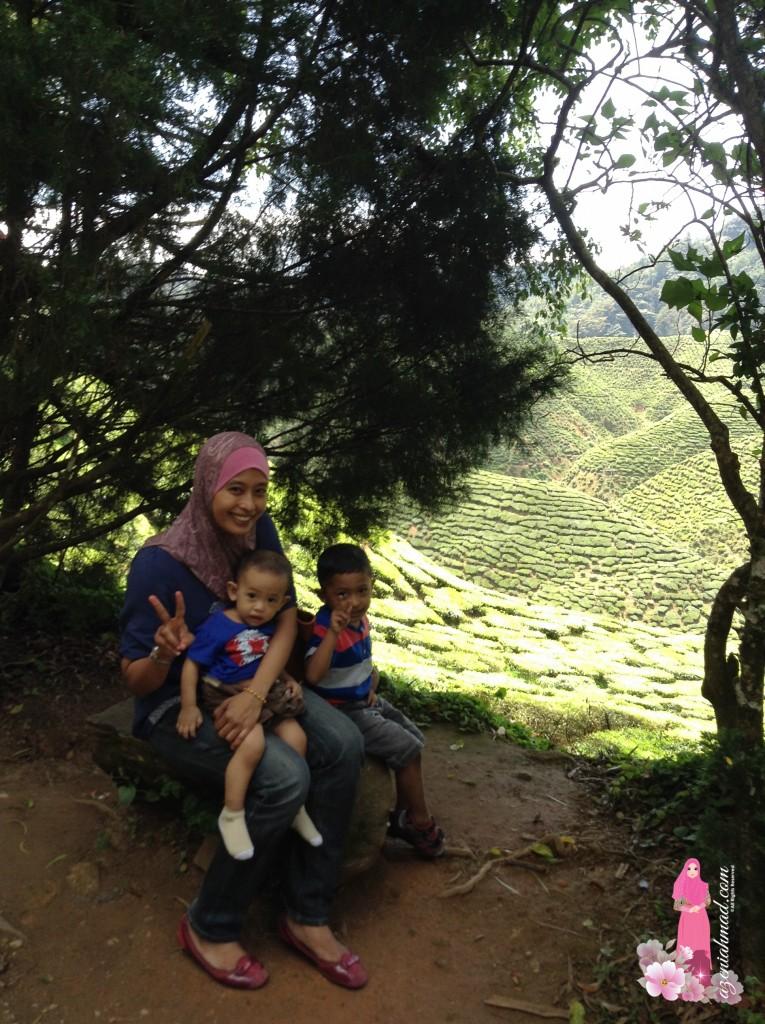 Menikmati pemandangan ladang teh sambil minum teh bersama keluarga