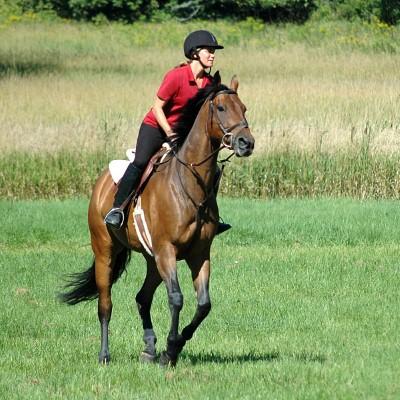 Berkuda bagus untuk bakar kalori dan untuk menguruskan badan.