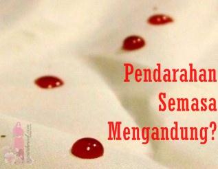 Pendarahan semasa mengandung