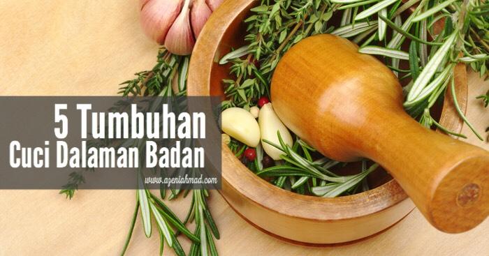 5 tumbuhan herba cuci dalaman badan